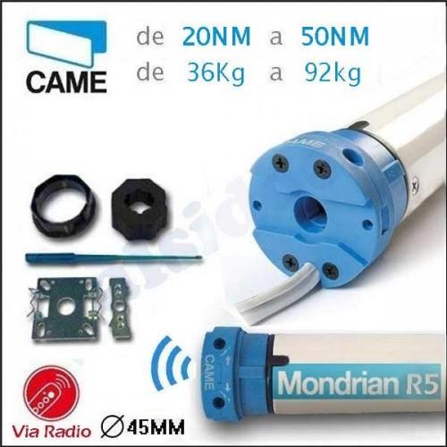 Motor CAME MONDRIAN R5 de 20Nm hasta 50NM. Via Radio