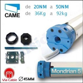 Motor MONDRIAN 5 CAME de 20Nm hasta 50NM. Por cable